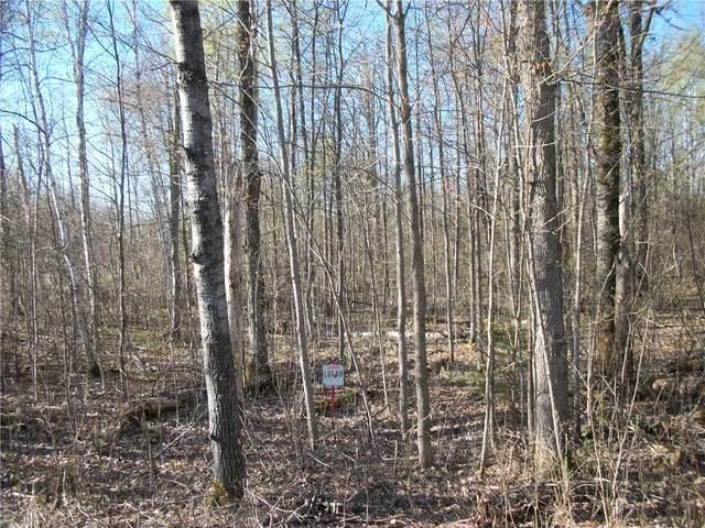 Lot 48 Cumberland Circle, Birchwood, WI 54817 (MLS #1541772) :: RE/MAX Affiliates