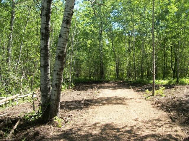 Lot 69 Bayfield/29 7/8 Ave Place, Birchwood, WI 54817 (MLS #1542841) :: RE/MAX Affiliates