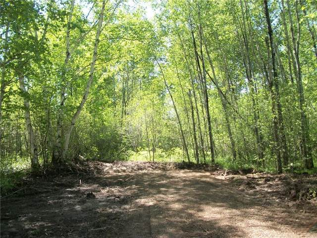 Lot 68 Bayfield/29 7/8 Ave Place, Birchwood, WI 54817 (MLS #1542842) :: RE/MAX Affiliates
