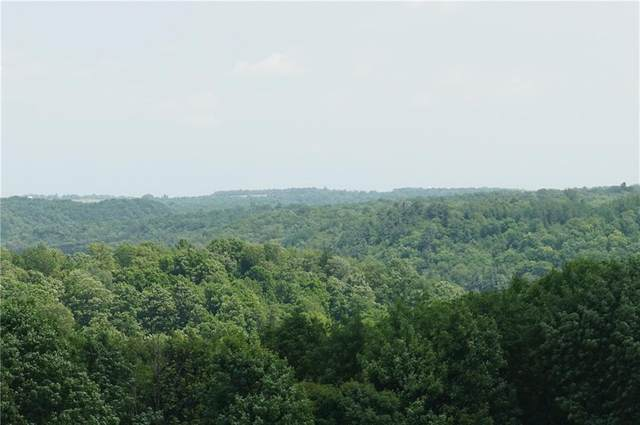 Lot 1 120th Avenue, Maiden Rock, WI 54750 (MLS #1542937) :: The Hergenrother Realty Group