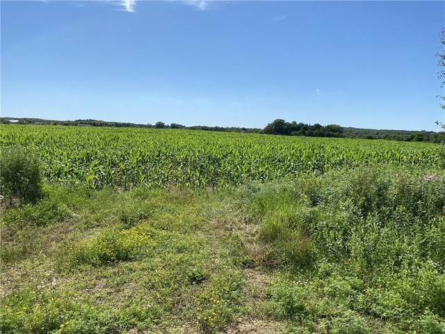 586 (lot 2) 315th Street, Knapp, WI 54749 (MLS #1544733) :: The Hergenrother Realty Group