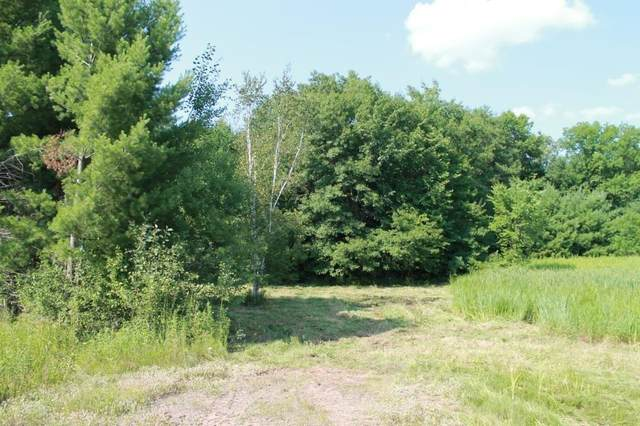 Lot 15 Lofty Pines Road, Other, MN 55063 (MLS #1544898) :: RE/MAX Affiliates