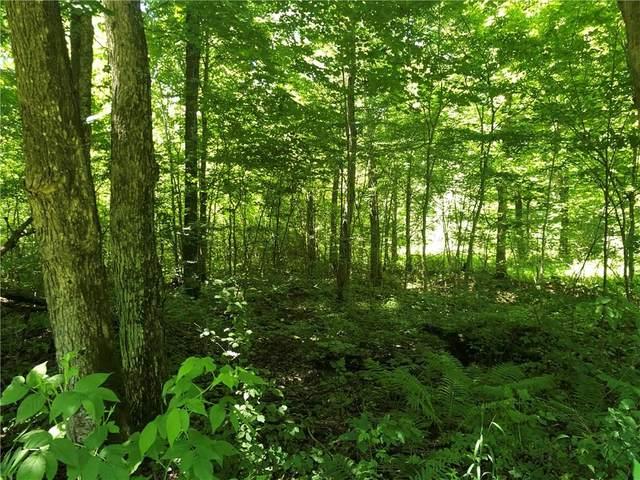 0 Hunters Lane, Jump River, WI 54526 (MLS #1545284) :: RE/MAX Affiliates