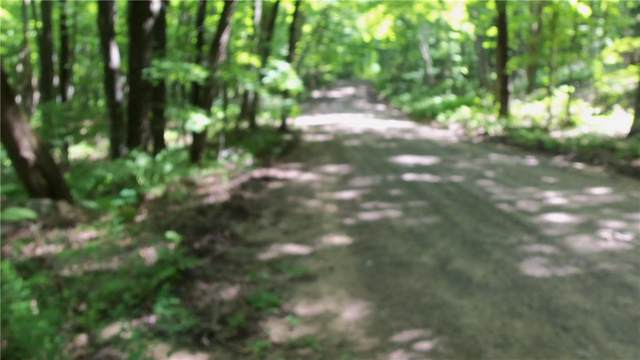 6.58 ACRES Chippewa Trail, Luck, WI 54853 (MLS #1545319) :: RE/MAX Affiliates
