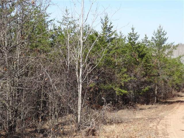 ON Bald Eagle Drive, Trego, WI 54888 (MLS #1545327) :: RE/MAX Affiliates