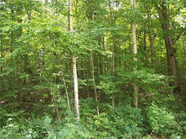 Lot 64 Maple Way, Birchwood, WI 54817 (MLS #1545497) :: RE/MAX Affiliates