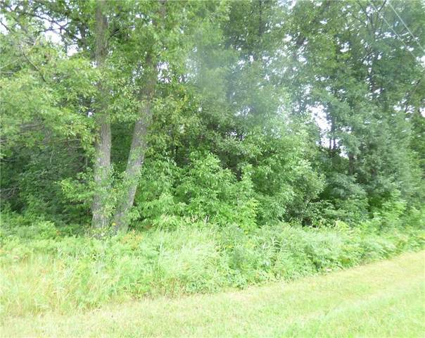 0 Stone Lake Road, Stone Lake, WI 54876 (MLS #1545588) :: The Hergenrother Realty Group