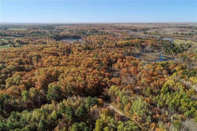 1013 Crandall Lane, Stone Lake, WI 54876 (MLS #1545652) :: The Hergenrother Realty Group
