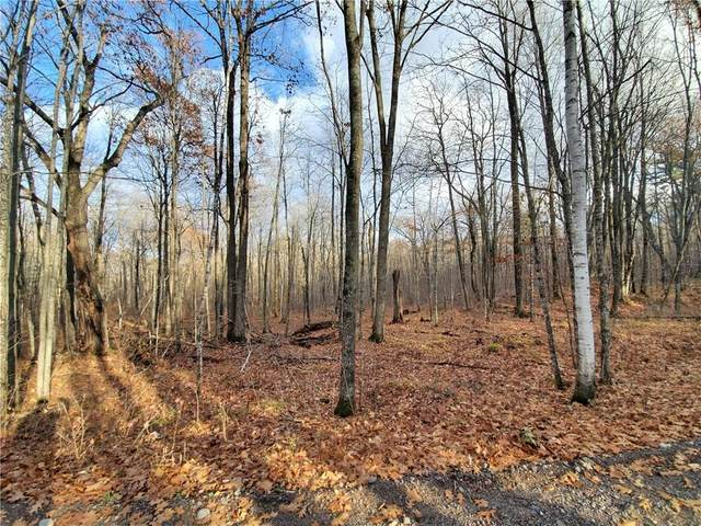 Lot 4 2.82 Acres, Couderay, WI 54828 (MLS #1548145) :: RE/MAX Affiliates