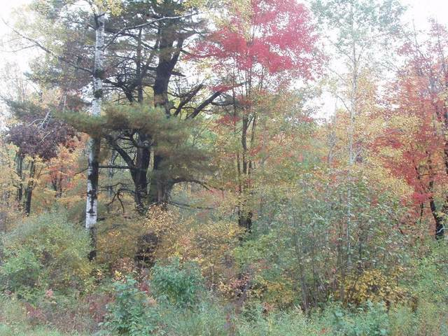 On Sundling Rd, Winter, WI 54896 (MLS #1548615) :: RE/MAX Affiliates