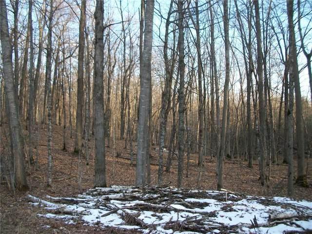 LOT #59 Woods (Birch) Avenue, Birchwood, WI 54817 (MLS #1549220) :: RE/MAX Affiliates