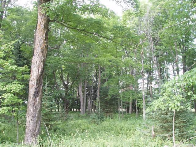 On North River Road, Park Falls, WI 54552 (MLS #1549498) :: RE/MAX Affiliates