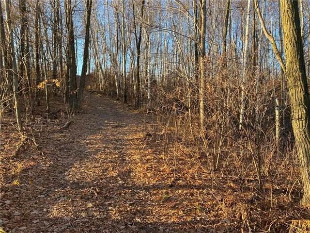 Lot 1 Hwy S, Chippewa Falls, WI 54729 (MLS #1549982) :: RE/MAX Affiliates