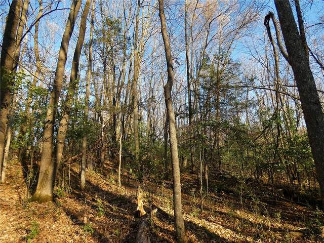 Lot 4 Sunset Landing Drive, Frederic, WI 54837 (MLS #1550044) :: RE/MAX Affiliates