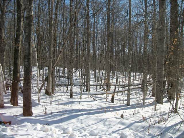 Lot #17 Allison Drive, Birchwood, WI 54817 (MLS #1550398) :: RE/MAX Affiliates
