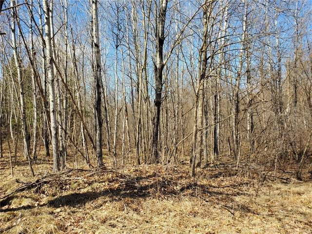 ON Sheep Camp Road, Ladysmith, WI 54848 (MLS #1551654) :: RE/MAX Affiliates