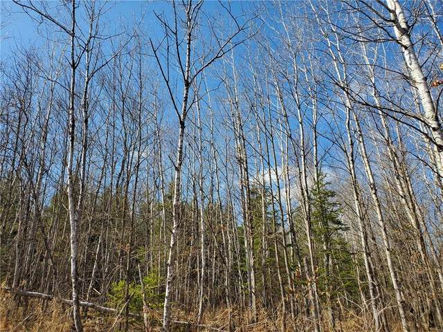 On Sheep Camp Road, Ladysmith, WI 54848 (MLS #1551659) :: RE/MAX Affiliates