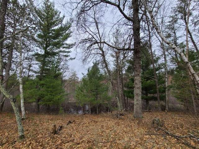 XXX Thoma Road, Webster, WI 54893 (MLS #1552443) :: RE/MAX Affiliates