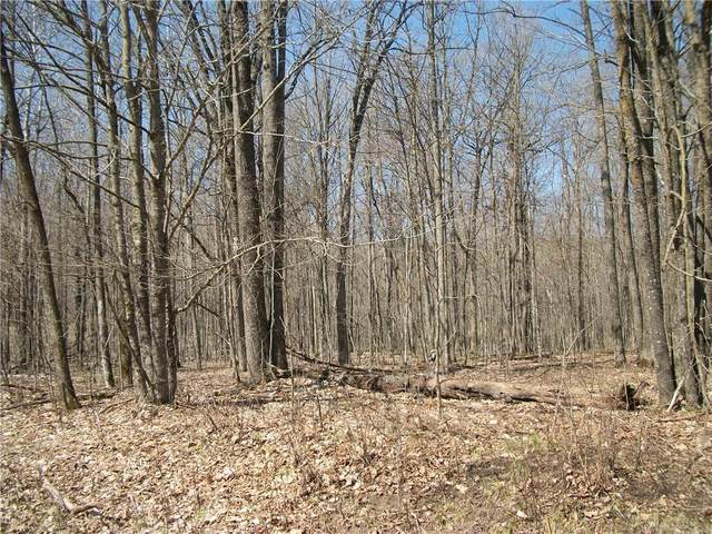 LOT #97 Woods (Spruce), Birchwood, WI 54817 (MLS #1552752) :: RE/MAX Affiliates