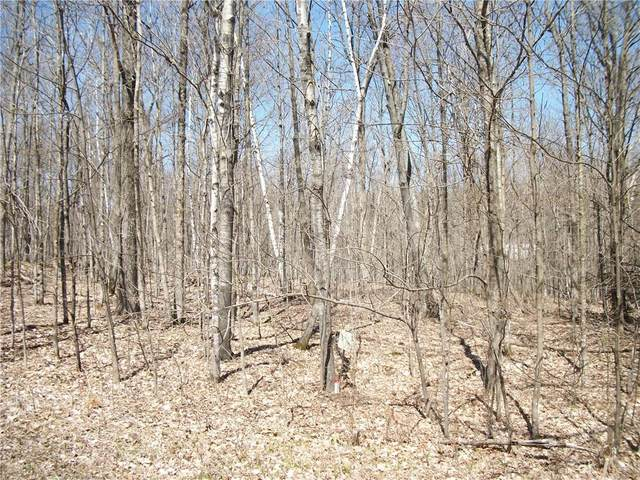 LOT#99 Woods (Spruce) Avenue, Birchwood, WI 54817 (MLS #1552754) :: RE/MAX Affiliates