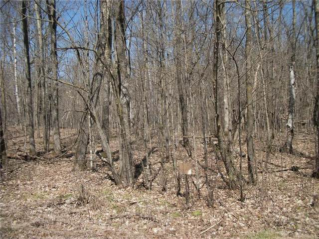 LOT 100 Woods (Spruce) Avenue, Birchwood, WI 54817 (MLS #1552756) :: RE/MAX Affiliates