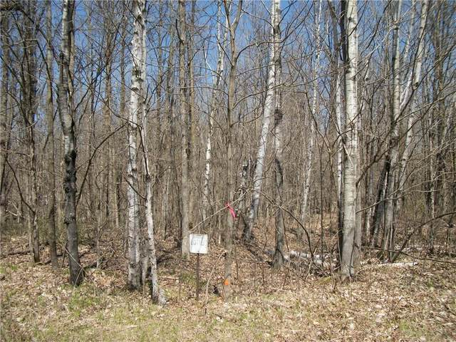 LOT #101 Woods (Spruce) Avenue, Birchwood, WI 54817 (MLS #1552757) :: RE/MAX Affiliates