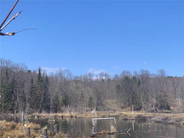 Lot 2 & Lot 4 W Perch Lake Road, Winter, WI 54896 (MLS #1552863) :: RE/MAX Affiliates