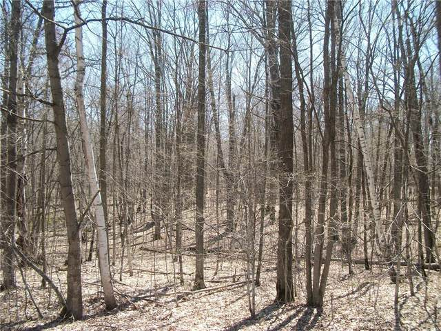 Lot #29 Woods (Spruce) Avenue, Birchwood, WI 54817 (MLS #1553141) :: RE/MAX Affiliates