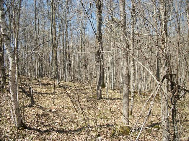 LOT #91 Maple Court, Birchwood, WI 54817 (MLS #1553148) :: RE/MAX Affiliates