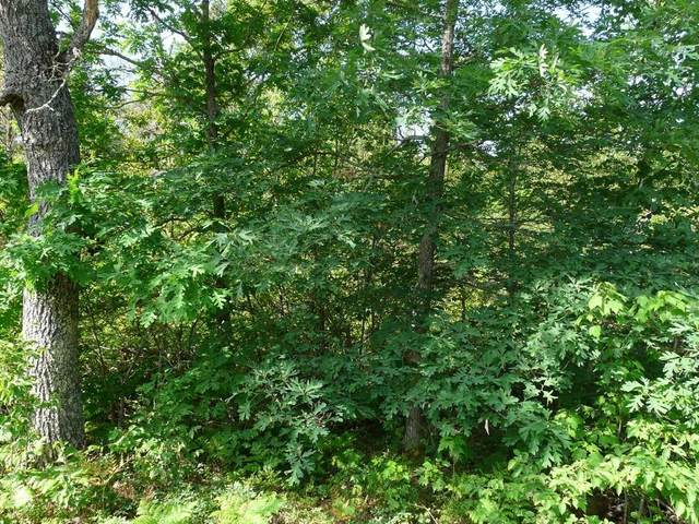 Lots 307 & 308 Deer Path Road, Danbury, WI 54830 (MLS #1554615) :: RE/MAX Affiliates