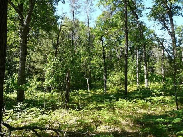 Lots 295 296 297 Deer Path Road, Webster, WI 54893 (MLS #1554822) :: RE/MAX Affiliates