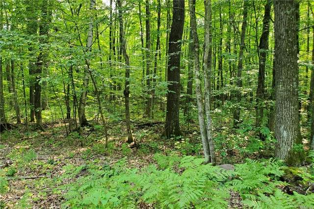Lot 49 & 50 Hardwood Court, Cable, WI 54821 (MLS #1557321) :: RE/MAX Affiliates