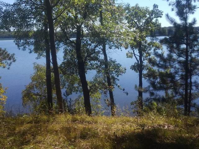 Lot 2 Peterson Trail, Spooner, WI 54801 (MLS #1559291) :: RE/MAX Affiliates
