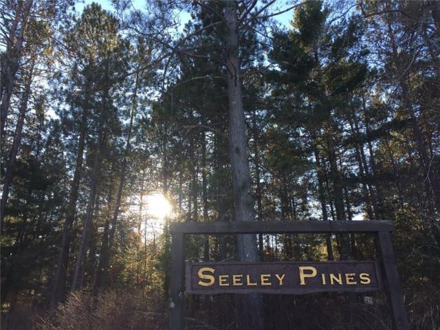 Lot 22 Wild Pines Lane, Hayward, WI 54843 (MLS #1526388) :: RE/MAX Affiliates