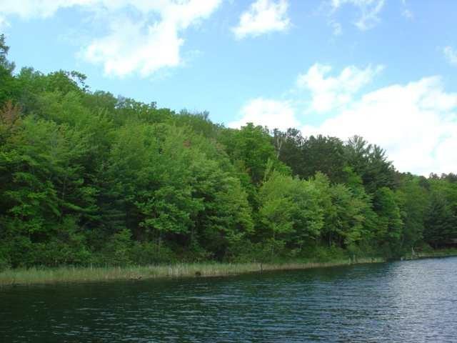 Lot 14 Pine Lake Road, Iron River, WI 54847 (MLS #1508135) :: RE/MAX Affiliates