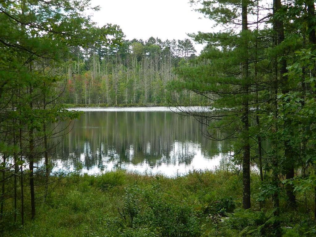 0 Adina Lake Drive - Photo 1