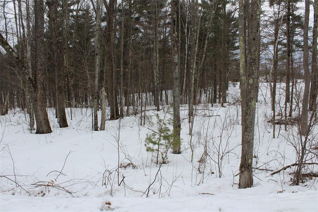 Lot 2 Hidden Woods Dr - Photo 1