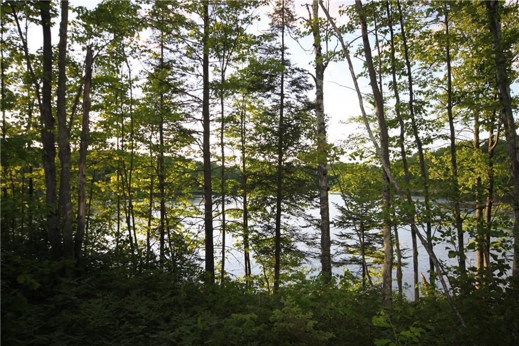 Lot 7 Timber Wolf Drive - Photo 1