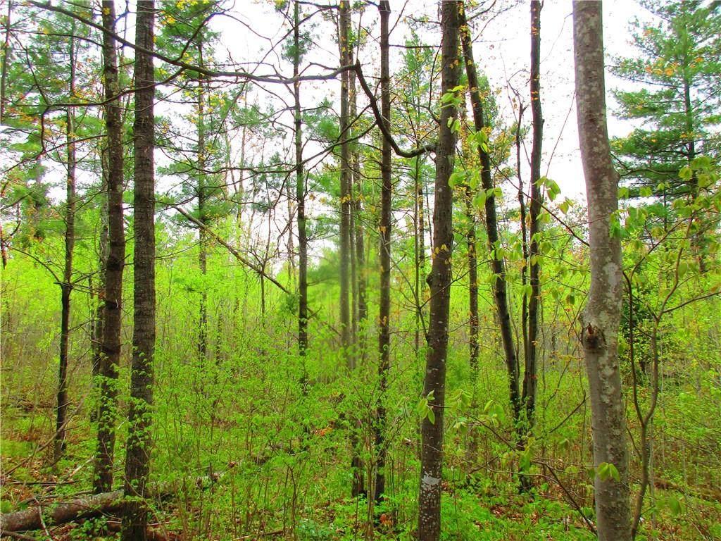0 Mosquito Brook Road - Photo 1