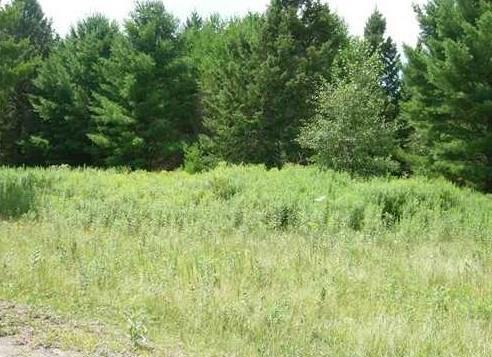 Lot 7 N Riverside Road, Cable, WI 54821 (MLS #1532356) :: RE/MAX Affiliates