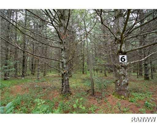 Lot 6 Robin Lane, Cable, WI 54821 (MLS #1532366) :: RE/MAX Affiliates