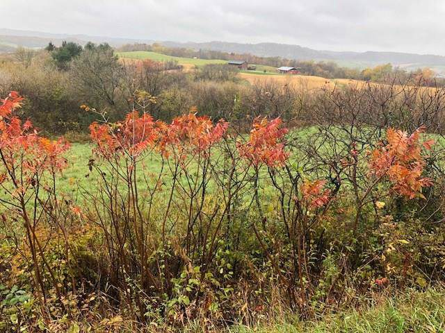 Lot 1 Boberg Lane, Arcadia, WI 54612 (MLS #1537096) :: The Hergenrother Realty Group