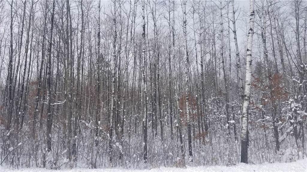 On Birch Road - Photo 1