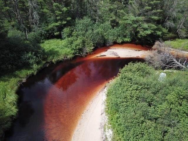 Black River Falls, WI 54615 :: RE/MAX Affiliates