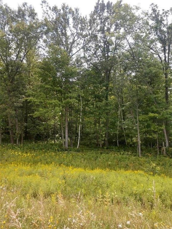 117 acres Mm Highway, Cadott, WI 54727 (MLS #1545495) :: RE/MAX Affiliates