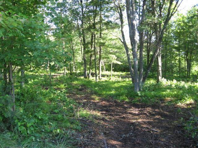 Lot 5 Deer Lane, Hayward, WI 54843 (MLS #1548189) :: RE/MAX Affiliates
