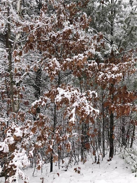 0 Sunset Pines Drive, Sarona, WI 54870 (MLS #1548361) :: RE/MAX Affiliates