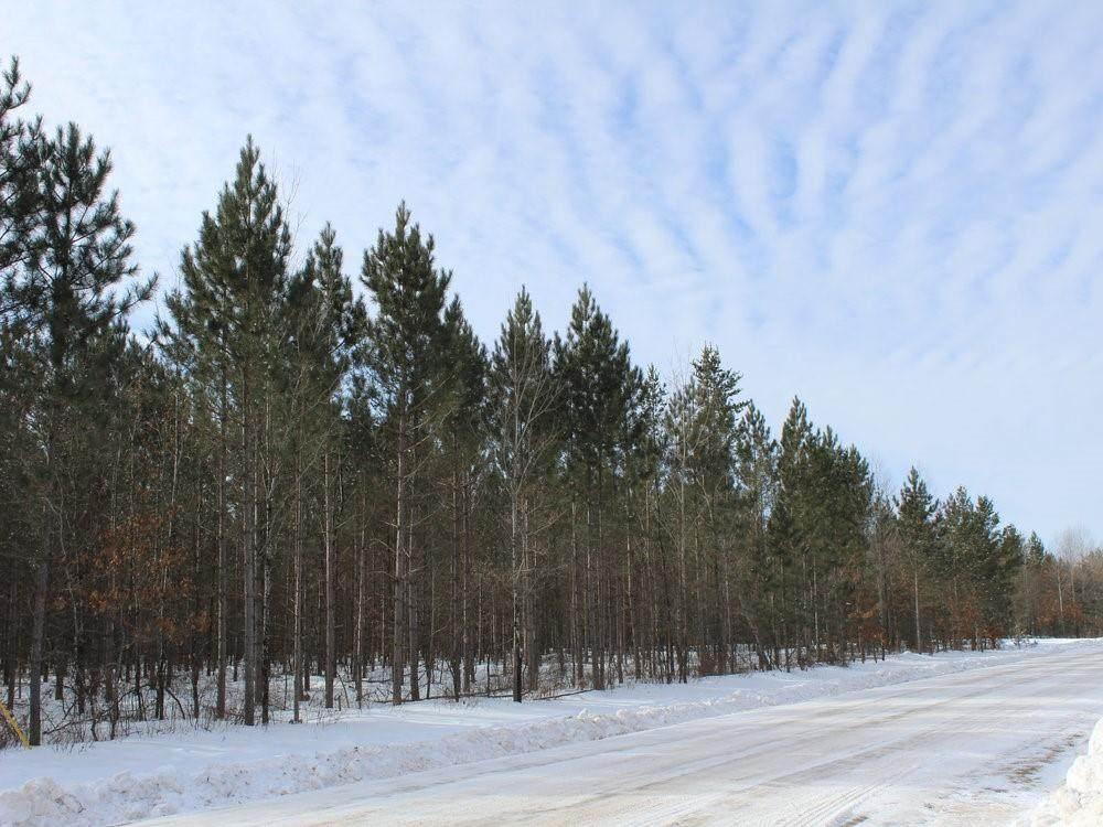 ON Whalen Lake  8223-5A Road - Photo 1