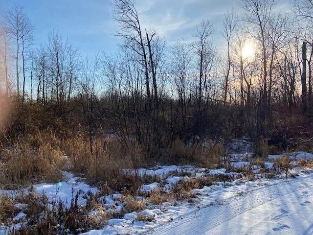 0 W Aborne Road, Ojibwa, WI 54862 (MLS #1549478) :: RE/MAX Affiliates