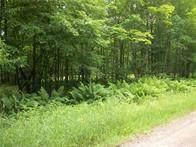 49 Woodland Ct, Birchwood, WI 54817 (MLS #1549761) :: RE/MAX Affiliates